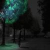 Proteínas brilhantes prometem ser futura substituição da luz elétrica
