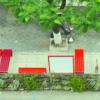 Da série Arquitetura e Urbanismo: Conheça os Parklets de São Paulo