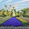 Conheça o Jardim Encantado de Cingapura